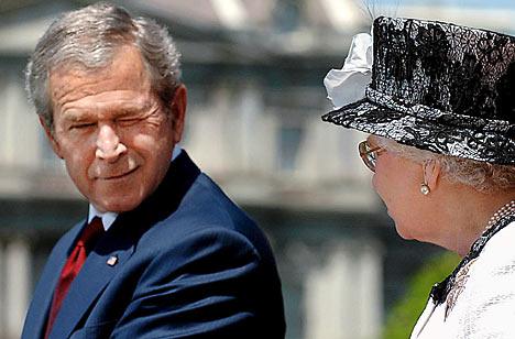 Bush wink