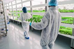 Farming 21st century