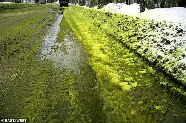 Green Snow Russia