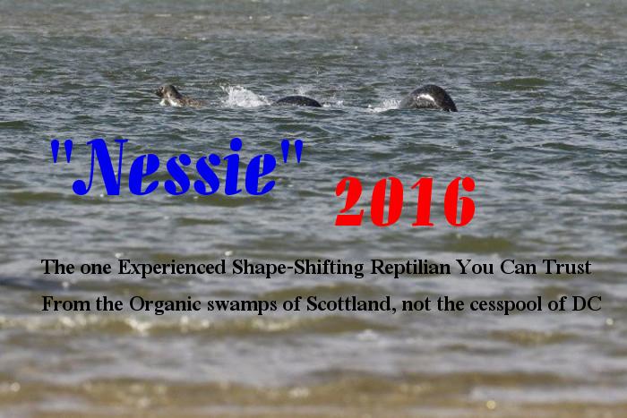 Nessie 2016