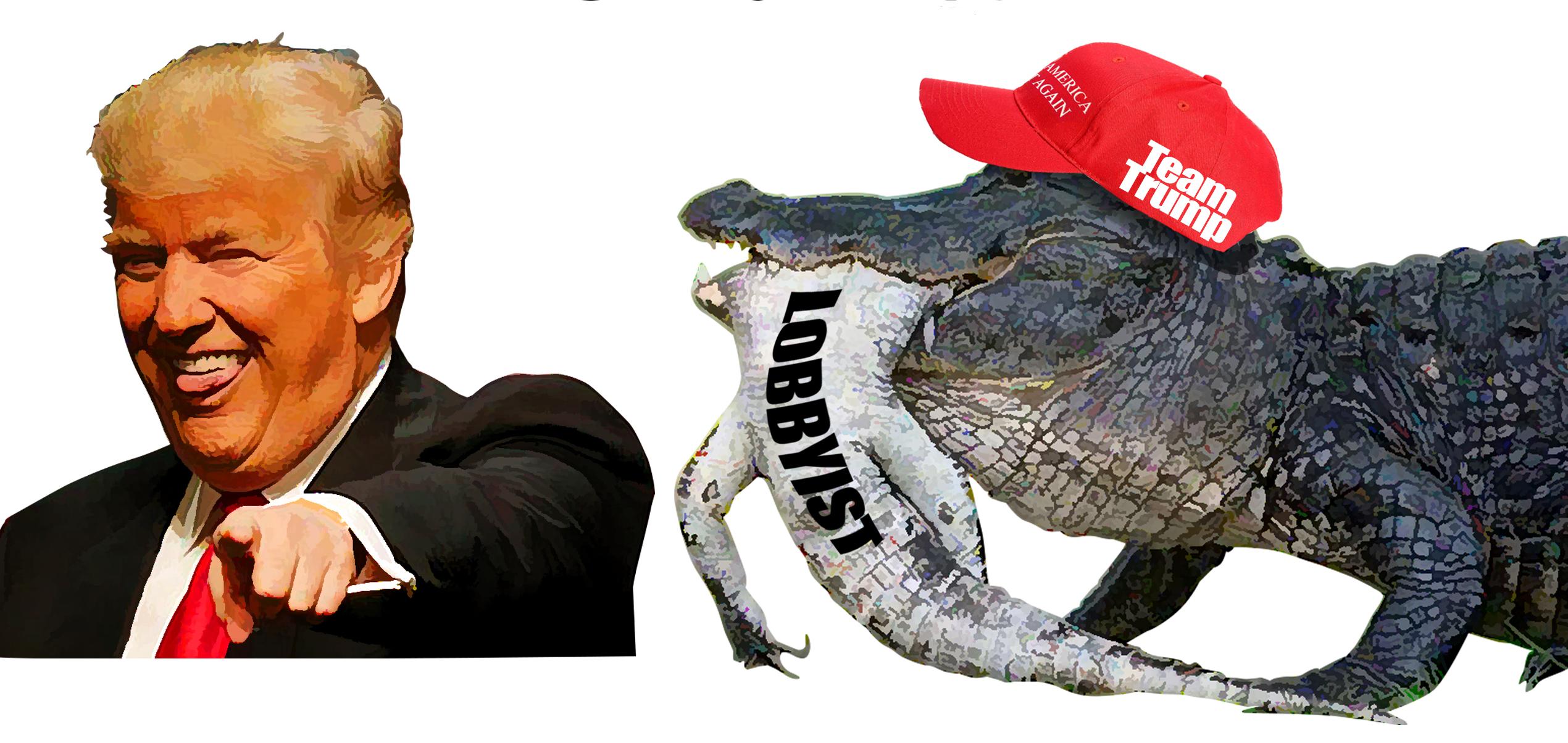 Trained aligator